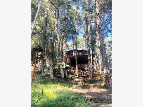 terreno en venta 500 m2 dentro de hermoso bosque