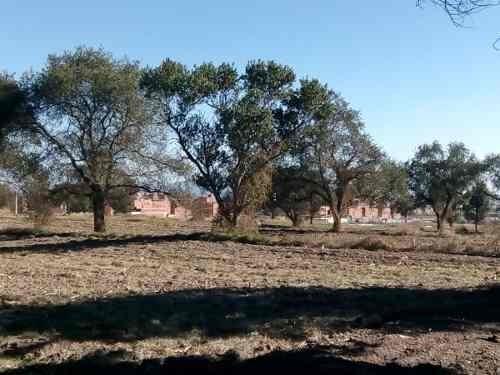 terreno en venta 5.2 hectareas, cerca de audi