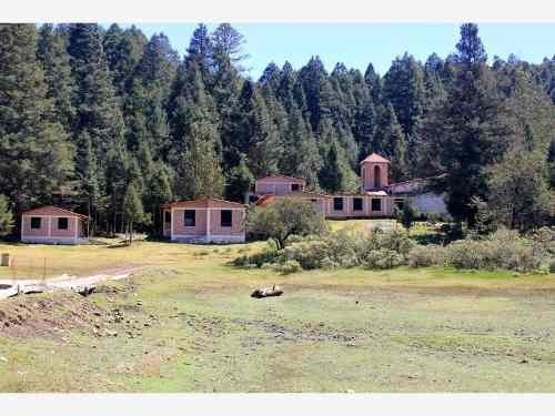 terreno en venta 543 m2 en hermoso bosque, con amenidades
