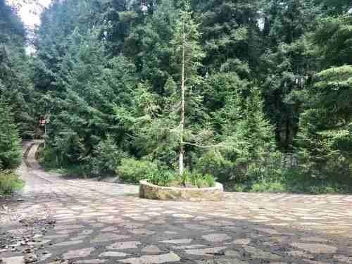 terreno en venta 645 m2 en mágico bosque