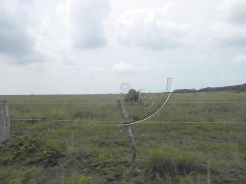 terreno en venta 75 hectáreas para ganado, siembra