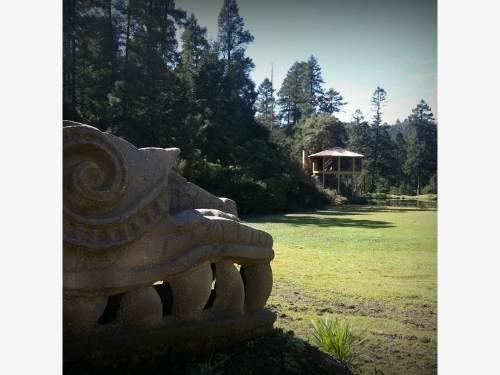 terreno en venta 795 m2 dentro de bosque de real del monte
