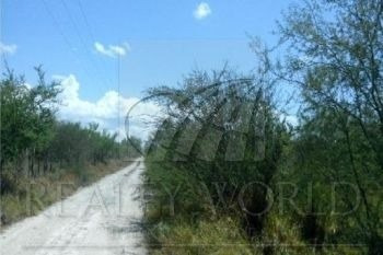 terreno en venta a 400 metros de la carretera pesuqueria - san isidro los ramones  $150 el m2
