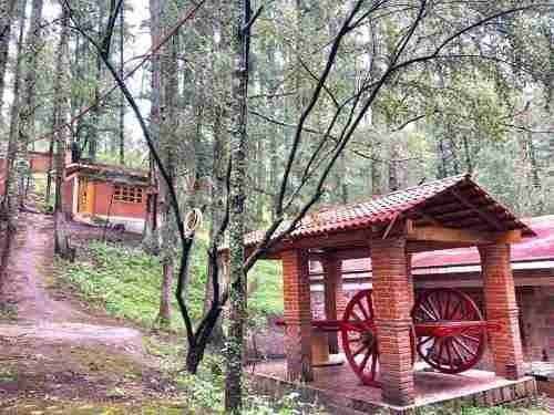 terreno en venta a hora y media el paraiso en el bosque del pueblo magico real del monte lotes