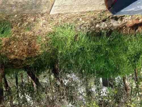 terreno en venta acueducto de xochimilco, naucalpan, edo mex