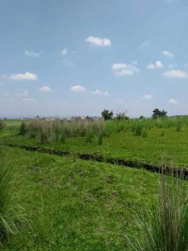 terreno en venta, almoloya del río, estado de méxico