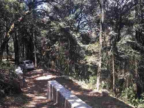 terreno en venta atrevete a adentrarte en el bosque de real del monte y haz la mejor inversion