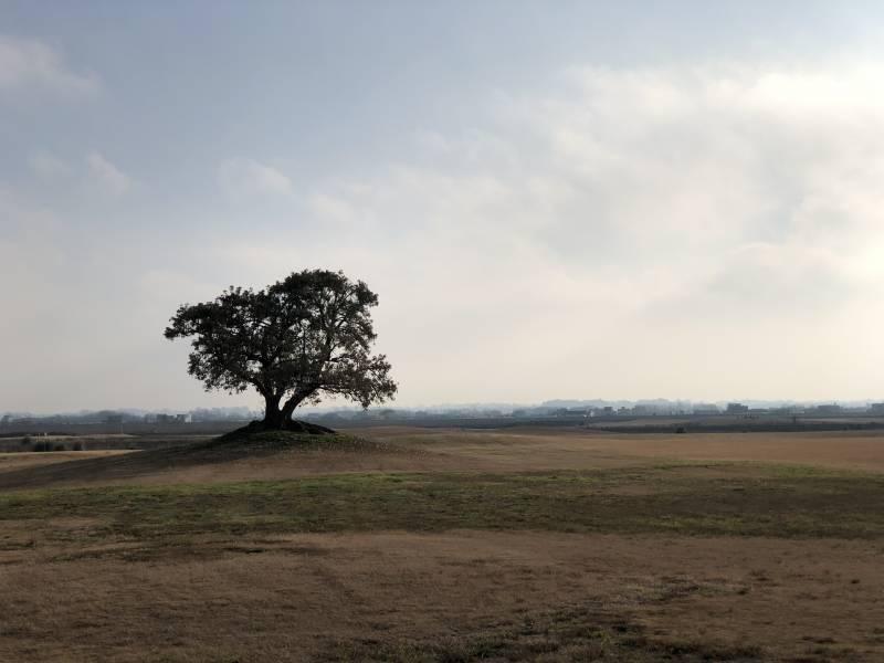 terreno en venta b° cerrado san sebastian (loreto)