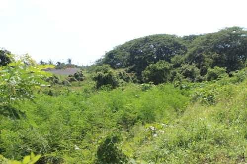 terreno en venta, bahía de banderas, nayarit
