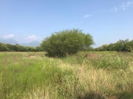 terreno en venta barranquito cadereyta