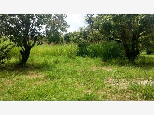 terreno en venta barrio ixtlahuacan