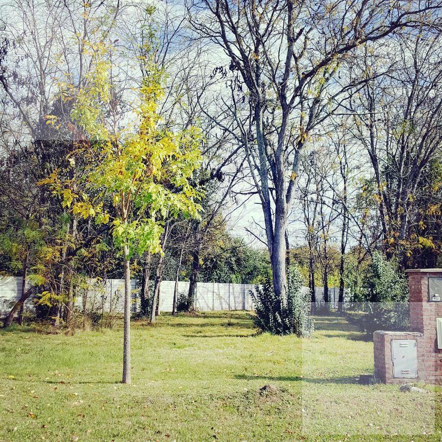 terreno en venta barrio san matias n552