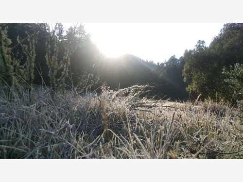 terreno en venta bellisimos en contacto con la naturaleza