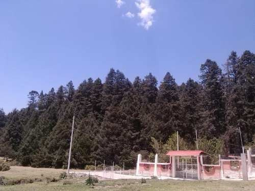 terreno en venta bello lugar rodeado por la mejor zona boscosa.