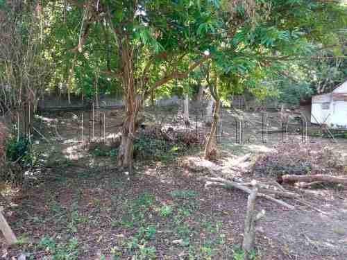 terreno en venta benito juarez (castillo)