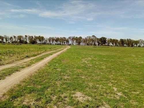 terreno en venta bicentenario y av hdalgo $1,000 x m2