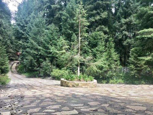 terreno en venta bonito bosque a solo 20 min de pachuca
