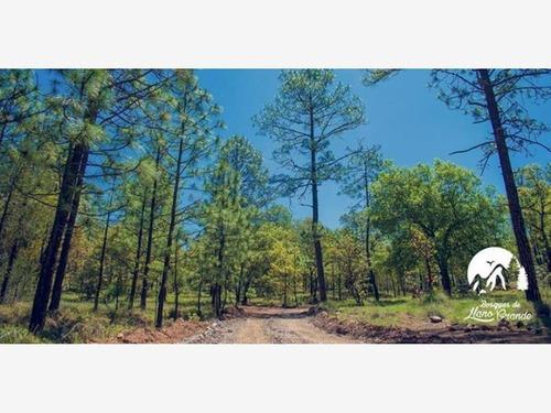 terreno en venta bosques de llano grande