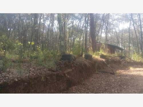 terreno en venta bosques de san cayetano