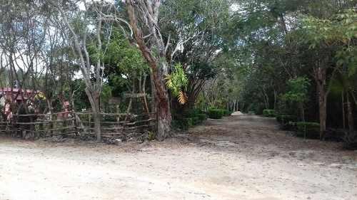 terreno en venta - bosques del caribe - sm 301