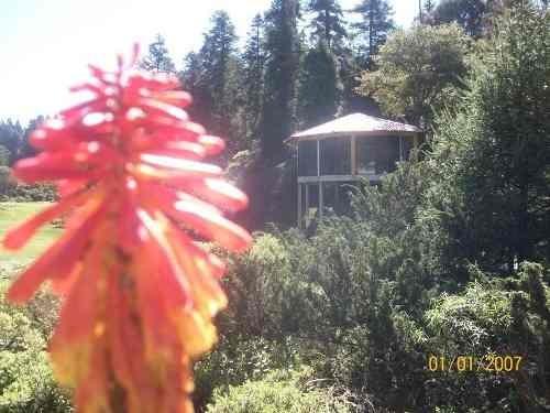 terreno en venta cabaña en zona boscosa, real del monte