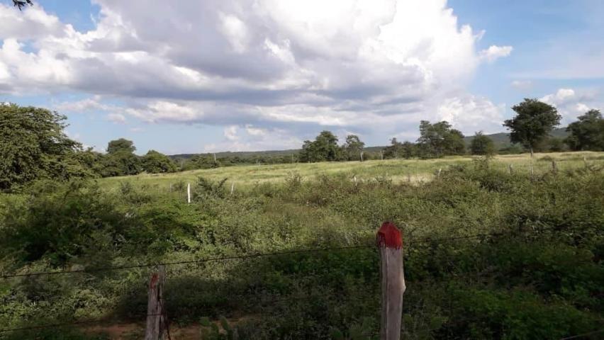 terreno en venta carora lara 20-836