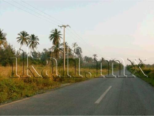 terreno en venta carretera a la termoelectrica