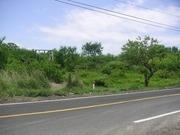 terreno en venta carretera a mandinga