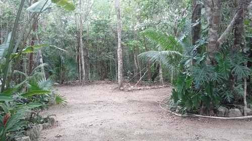 terreno en venta - carretera cancun  - merida