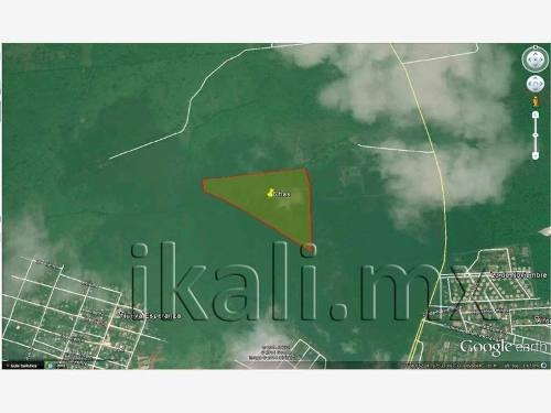 terreno en venta carretera tuxpan-tamiahua