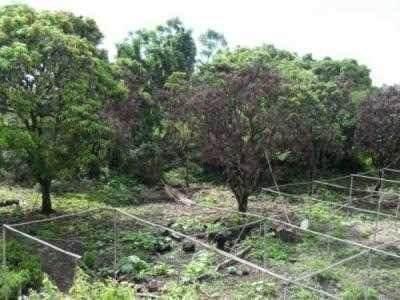 terreno en venta cerca del zócalo de jiutepec, morelos