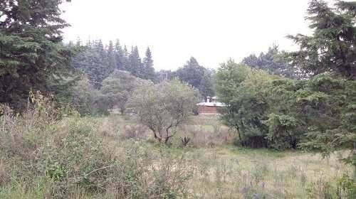 terreno en venta, cerrada de los pinos, santa rosa xochiac