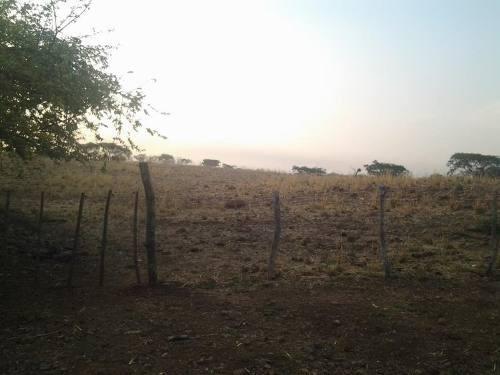 terreno en venta cerro colorado,alzada , palmillas,alcaraces