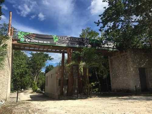 terreno en venta - chemuyil