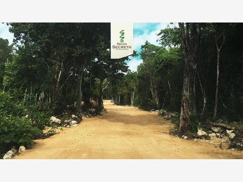 terreno en venta chemuyil