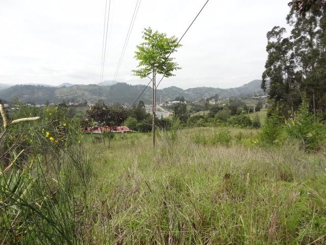 terreno en venta con casa en azogues muy barato con 8325 mtr