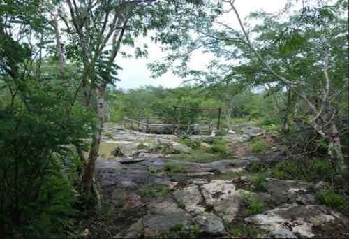 terreno en venta con cenote en isla mujeres