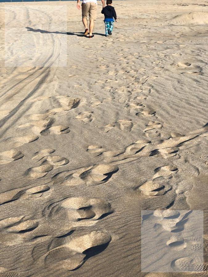 terreno en venta costa esmeralda maritimo 3