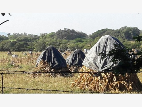 terreno en venta cuahutemoc