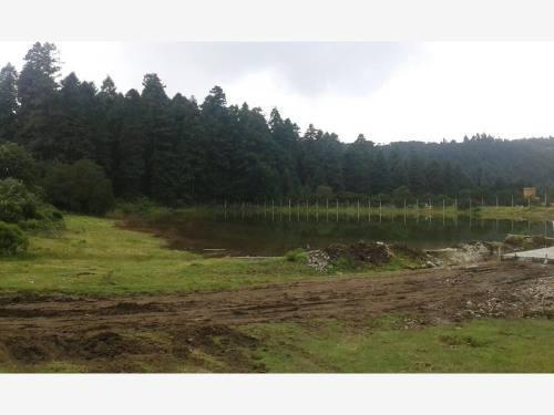 terreno en venta damos facilidades, terrenos boscosos escriturados