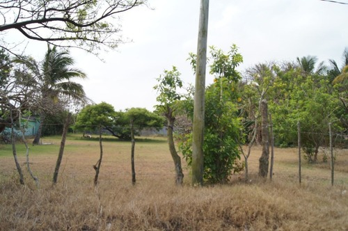 terreno en venta de 1,250 m2 en antón lizardo, veracruz