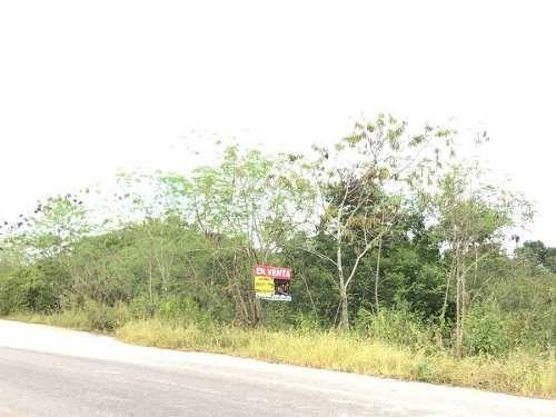 terreno en venta de 2.1ha en kikteil, yucatán