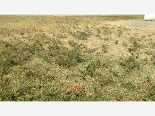 terreno en venta diego ruiz