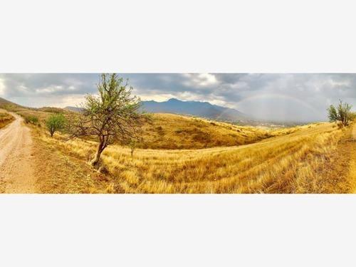 terreno en venta ejido guadalupe victoria secc oeste