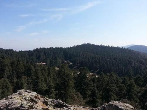 terreno en venta el bosque encantado de real del monte. hidalgo, vive, siente y respira.
