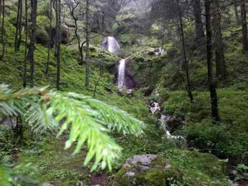 terreno en venta el bosque, hasta 24 meses sin intereses, crédito facil y rapido