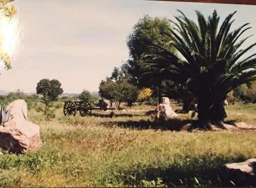 terreno en venta el jiadi la loma hidalgo