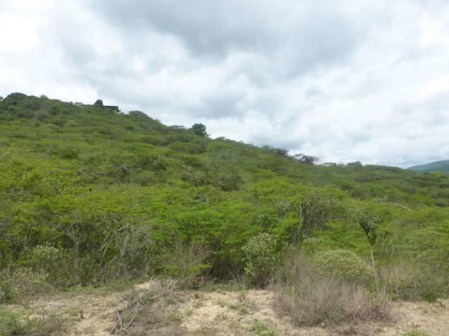 terreno en venta el manzano barquisimeto lara 20-2720