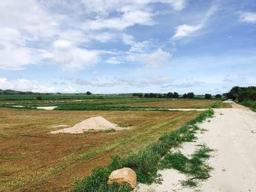 terreno en venta el rosedal