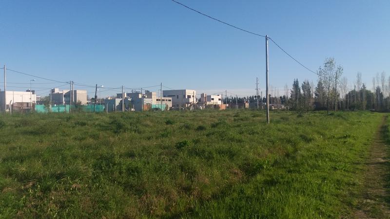 terreno en venta en 409 139 y 141 villa elisa - alberto dacal propiedades